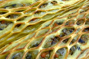 Puff pastry lattwork with vegetables