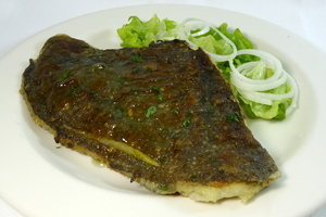 Grilled turbot with salad