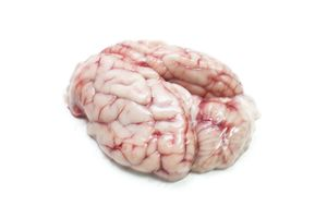 Lamb brains