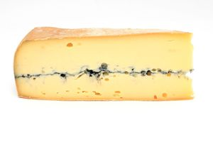 Morbier raw milk cheese