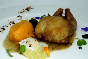 Filled quail with Perigord sauce