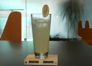 Gin Fizz Cocktail